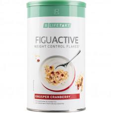 Хлопья для контроля веса с клюквой LR Health and Beauty LR Lifetakt Figu Active, 450 г 80295